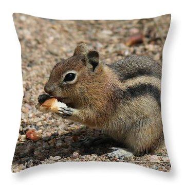 Snack Time Throw Pillow by Christy Pooschke