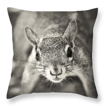 Snack Time Throw Pillow by Patrick M Lynch