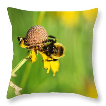 Snacktime Throw Pillow