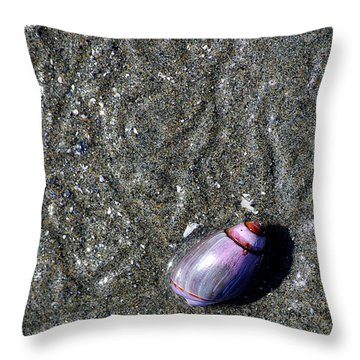 Throw Pillow featuring the photograph Snail's Pace by Lisa Phillips