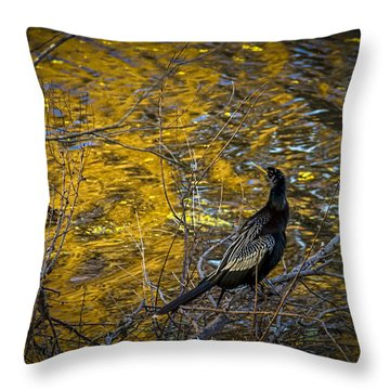 Cormorant Throw Pillows