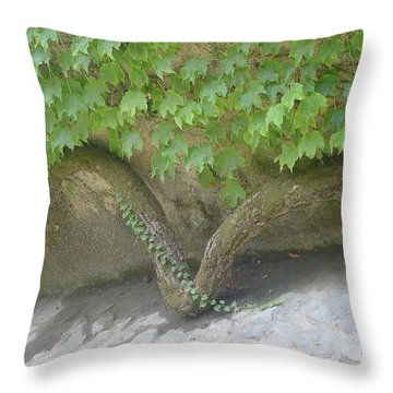 Snake Branch Throw Pillow by Nora Boghossian