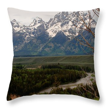 Snake River Framed Throw Pillow
