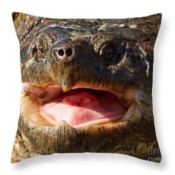 Snap Snap Throw Pillow by Lloyd Alexander