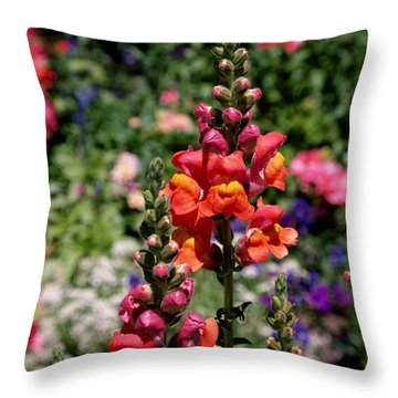 Snapdragons Throw Pillow by Rona Black