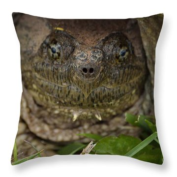 Snapper Throw Pillow by Randy Bodkins