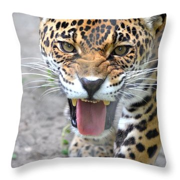 Snarling Jaguar  Throw Pillow