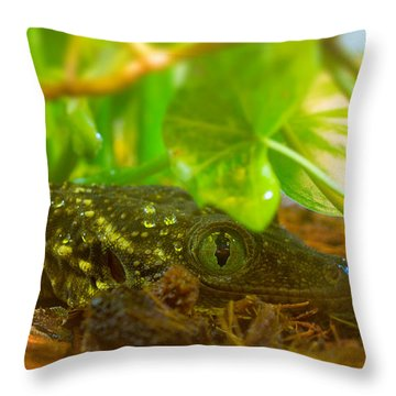 Sneaking And Looking Throw Pillow