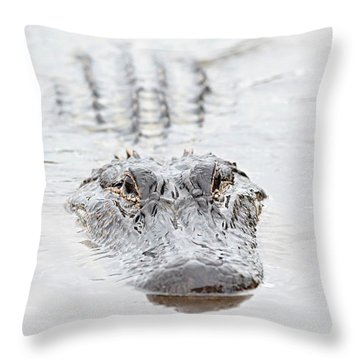 Sneaky Swamp Gator Throw Pillow by Carol Groenen