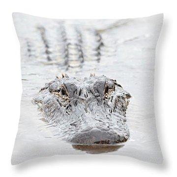 Sneaky Swamp Gator Throw Pillow