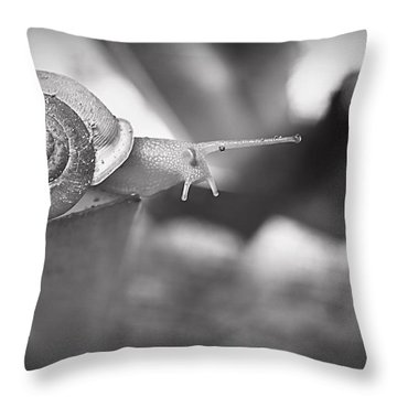 Snips And Snails... Throw Pillow by Tammy Schneider