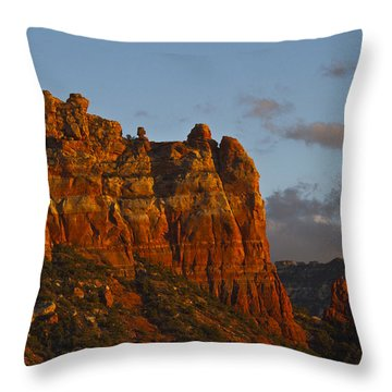 Throw Pillow featuring the photograph Snoopy And Friends by Tom Kelly