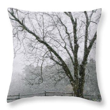Snow And Pecan Tree Throw Pillow