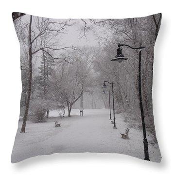 Snow At Bulls Island - 29 Throw Pillow