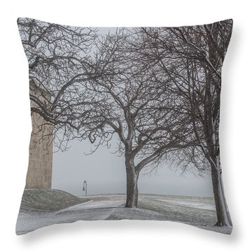 Snow At Castle Island Throw Pillow