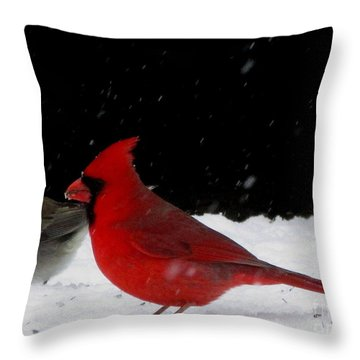 Snow Birds Throw Pillow
