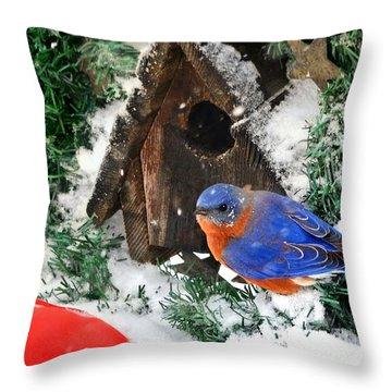 Snow Bluebird Christmas Card Throw Pillow by Nava Thompson