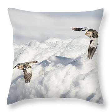 Snow Buntings In Flight Throw Pillow