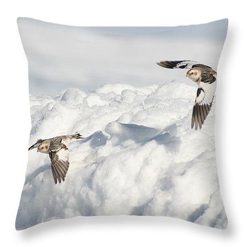 Throw Pillow featuring the photograph Snow Buntings In Flight by William Selander