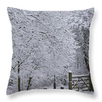 Snow Canopy Throw Pillow by David Birchall