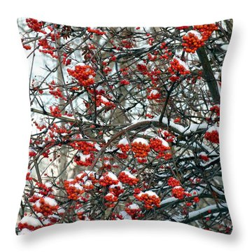 Snow- Capped Mountain Ash Berries Throw Pillow by Will Borden