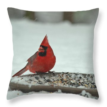 Snow Cardinal Throw Pillow