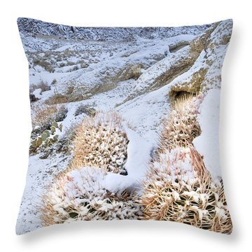 Throw Pillow featuring the photograph Snow Covered Cactus Below Mount Whitney Eastern Sierras by Dave Welling