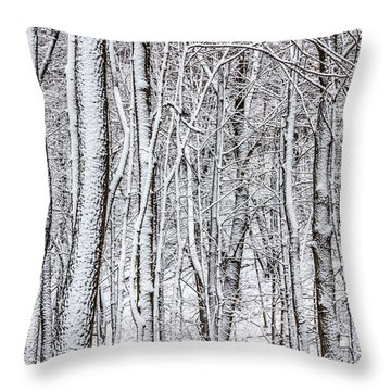 Snow Covered Forest 2 Throw Pillow