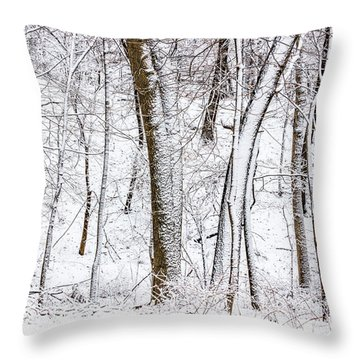 Snow Covered Forest 5 Throw Pillow