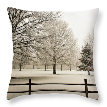 Throw Pillow featuring the photograph Snow-covered Landscape by Ann Murphy