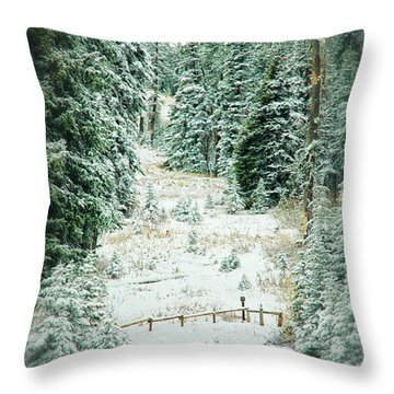 Snow Covered Path Throw Pillow by Mary Timman