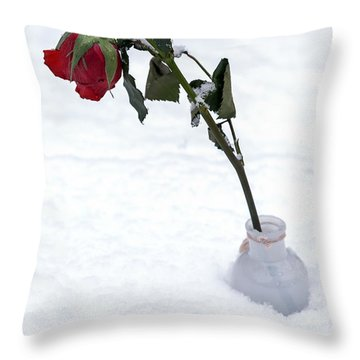Snow-covered Rose Throw Pillow by Joana Kruse