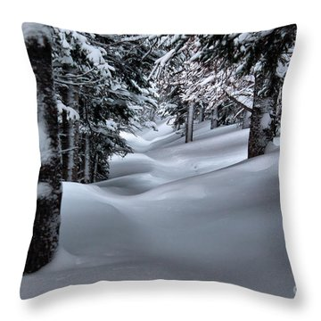 Snow Covered Trail Throw Pillow by Steven Reed