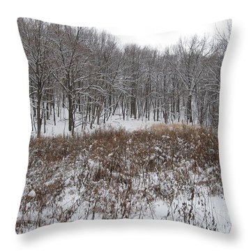 Snow Covered Woodland Throw Pillow