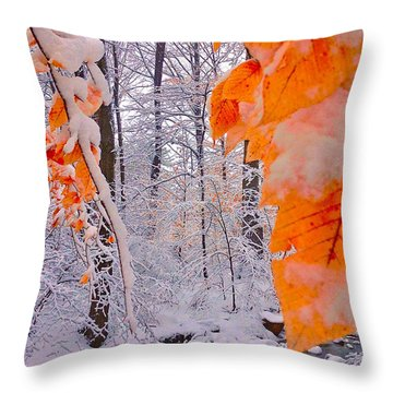 Snow Covered Woods And Stream Throw Pillow