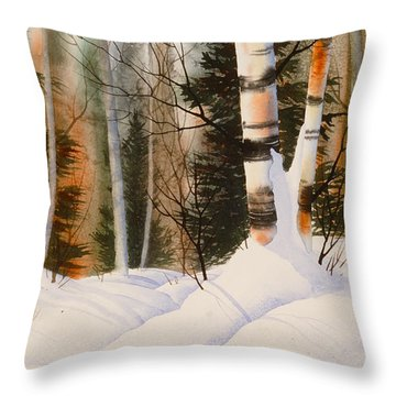Snow Crevice Throw Pillow by Teresa Ascone