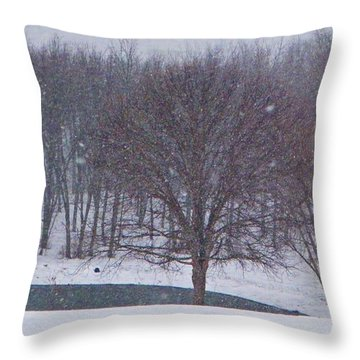 Snow Day Throw Pillow by Chris Berry