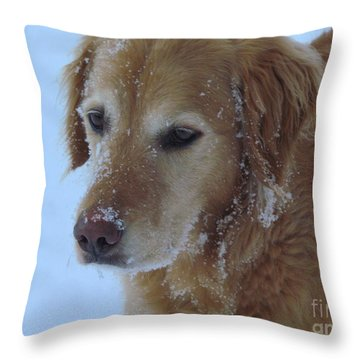 Snow Day Throw Pillow by Elizabeth Dow
