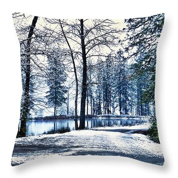 Throw Pillow featuring the photograph Snow Day For Fishing by Julia Hassett