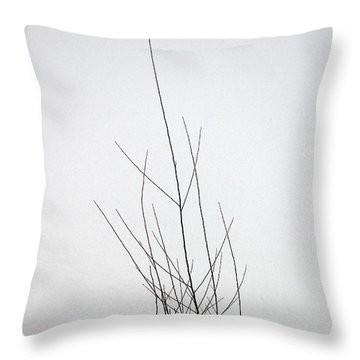 Snow Drifts In Mongolia Throw Pillow