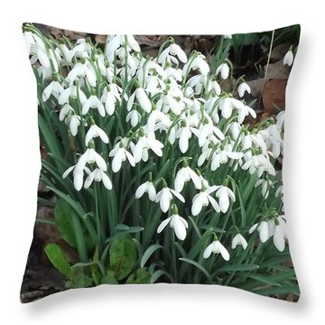 Snow Drops Throw Pillow by John Williams