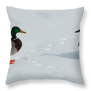 Throw Pillow featuring the photograph Snow Ducks by Mim White