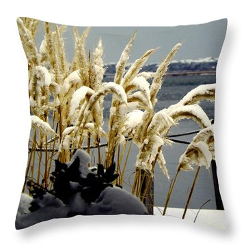 Snow Dust Throw Pillow by Karen Wiles