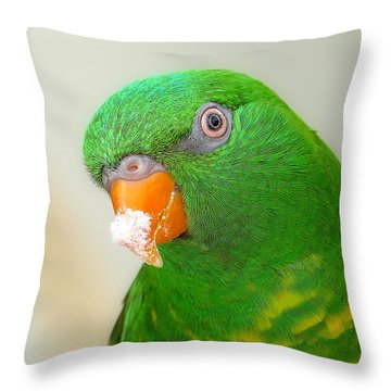 Throw Pillow featuring the photograph Snow Face 01 by Kevin Chippindall