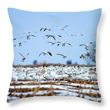 Snow Fall Throw Pillow