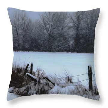 Snow Fence Throw Pillow by Erica Hanel