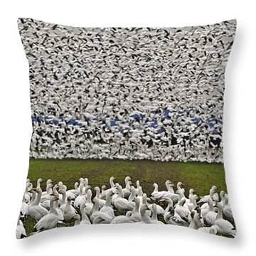 Snow Geese By The Thousands Throw Pillow by Valerie Garner
