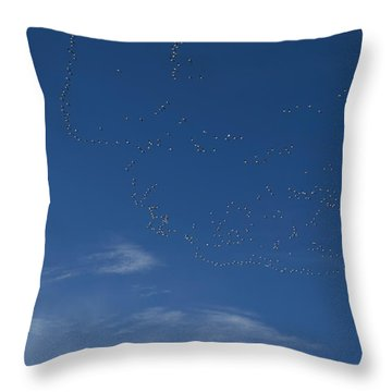 Snow Geese In Flight Throw Pillow
