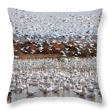 Snow Geese No.4 Throw Pillow