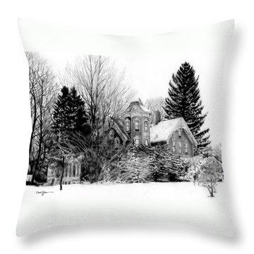 Da196 Snow House By Daniel Adams Throw Pillow